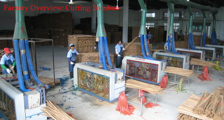 Bamboo Flooring Factory Overview