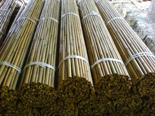 Bamboo Fence Rolled Bamboo Fencing Black Bamboo