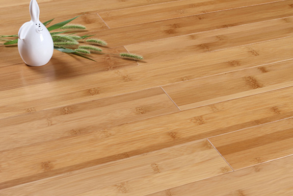 bamboo flooring reviews.