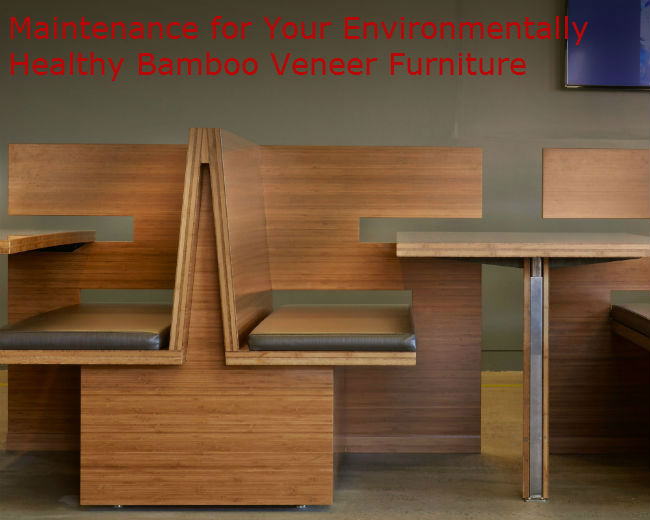 Maintain Your Environmentally Healthy Bamboo Veneer Furniture