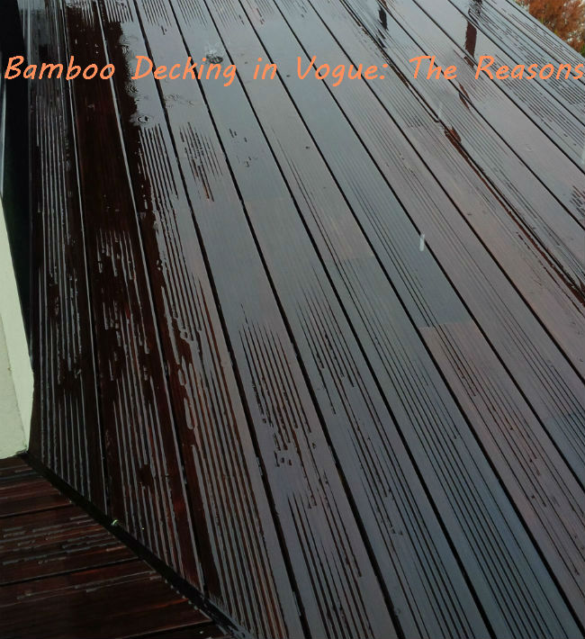 Bamboo Decking in Vogue: The Reasons