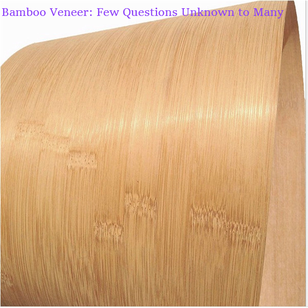 Bamboo Veneer: Few Questions Unknown to Many