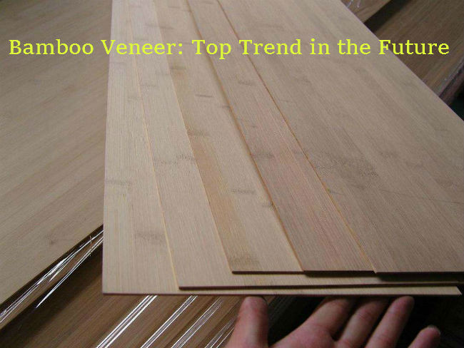 Bamboo Veneer - The Top Trend in the Future