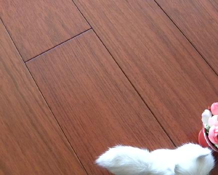 Hardwood Flooring   Jatoba